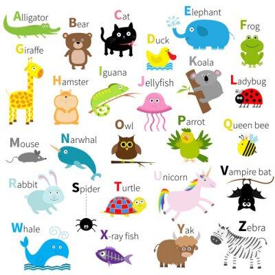 Fototapete Zoo tierisches alphabet. Cute Cartoon Zeichensatz. Isoliert. Weißes Design. Baby Kinder Bildung. Alligator, Bär, Katze, Ente, Elefant, Frosch, Giraffe, Hamster, Leguan, Quallen, Koala Flaches Design.
