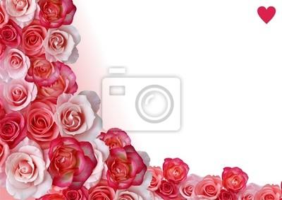 Zusammenfassung Grenze, Blumen, weiß und rosa Hintergrund