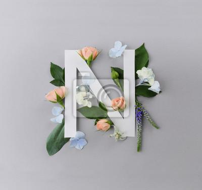 Zusammensetzung mit Buchstaben N und schönen Blumen auf Farbhintergrund
