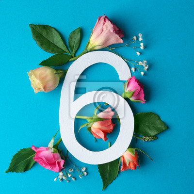Zusammensetzung mit Nr. 6 und schönen Blumen auf Farbhintergrund