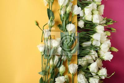 Zusammensetzung mit schönen Blumen und Papier auf Farbhintergrund