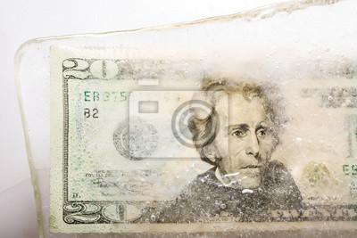 zwanzig Dollar eingefroren im Eis