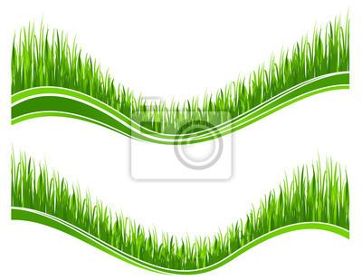 Zwei Wellen des grünen Gras