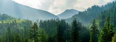 Poster A mountain valley, Jibhi, Tirthan Valley, Himachal Pradesh, India