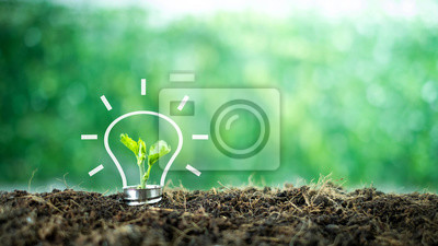 Poster A small tree born on a light bulb with icons light bulb for renewable, sustainable development over blurred green nature background.  environment concept.Ecology concept.