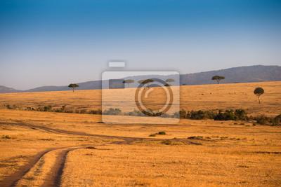 Afrikanische Landschaft im Masai Mara Nationalpark Kenia