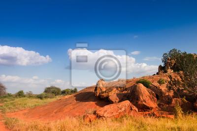 Afrikanische Landschaft mit roten Felsen