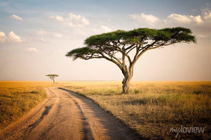 Poster Afrikanische Landschaft - Tansania