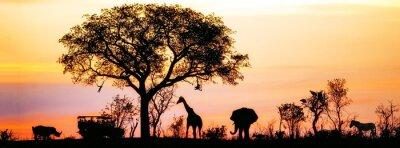 Poster Afrikanische Safari-Schattenbild-Fahne