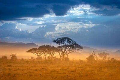 Poster Afrikanische Savanne Der Fuß des Kilimandscharo.