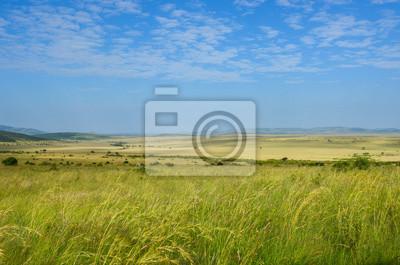 Afrikanische Savannenlandschaft, Masai Mara Nationalpark, Kenia, Afrika