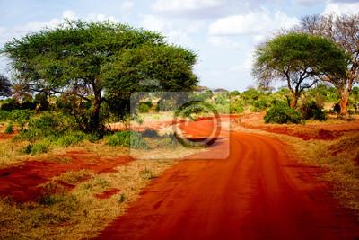 Afrikanische Straße