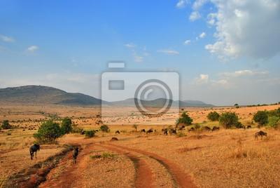 Afrikanische Straße und Antilopen Gnu