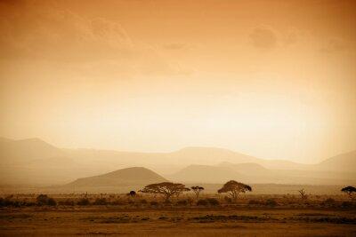 Poster afrikanischen Savanne bei Sonnenaufgang