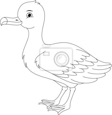 Albatros malvorlagen wandposter • poster weißem Hintergrund, Möwe ...
