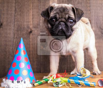 Alles Gute Zum Geburtstag Mops Welpen Hund Wandposter Poster Pug