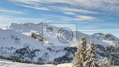 Alpine Skigebiet