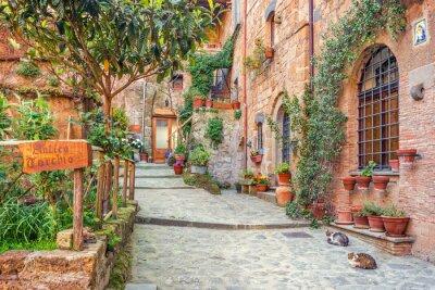 Poster Alte Stadt Toskana Italien