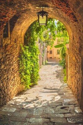 Poster Alte Straßen von viel Grün einer mittelalterlichen toskanischen Stadt.