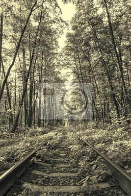 Alten Stil-Foto von Waldbahn