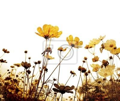 altmodische Blume - mit photoshop von meinen Vorlagen gemacht