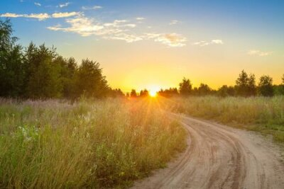Poster amazing summer rural landscape with sunrise, road and forest . scenery spring scene view