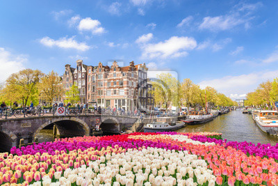 Poster Amsterdam-Stadtskyline an der Kanalufergegend mit Frühlingstulpenblume, Amsterdam, die Niederlande