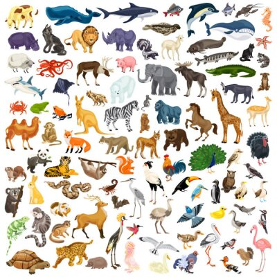 Poster Animals icon set. Cartoon set of animals vector icons for web design