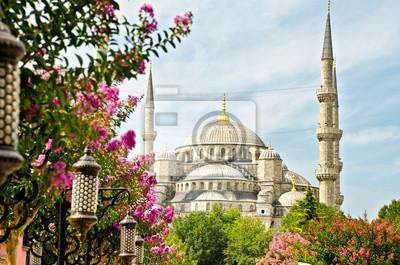 Ansicht von Santa Sofia, Istanbul