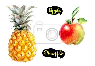 Poster Apfel Ananas Aquarell