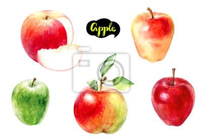 Poster Apfel Obst Aquarell