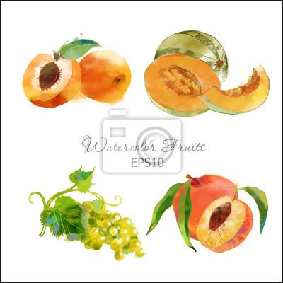Aprikose, Melone, Trauben, Pfirsich,