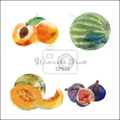 Aprikose, Wassermelone, Melone, Kiwi,