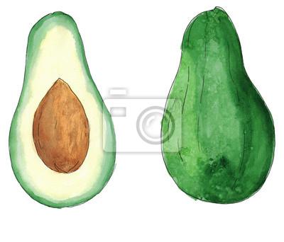 Aquarell Skizze frische Avocado isoliert
