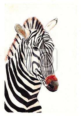 Aquarell wildes Zebra Art