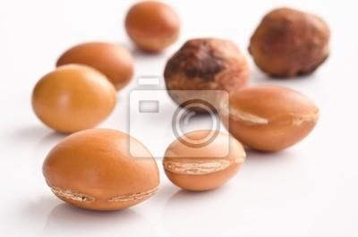 Argan Früchte