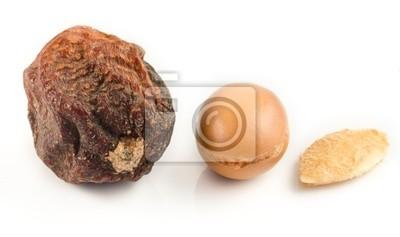 Argan Früchte mit Nut, mit Schale und Argan-Mandeln