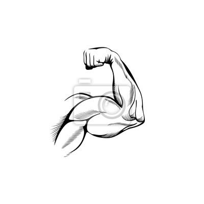 Arm-muskeln wandposter • poster ballen, Haltung, greifen | myloview.de