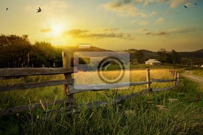 Poster art rural landscape. field and grass