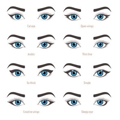 Poster Arten Von Augen Make Up. Eyeliner Form Tutorial. Illustration Der  Augenbraue Linie