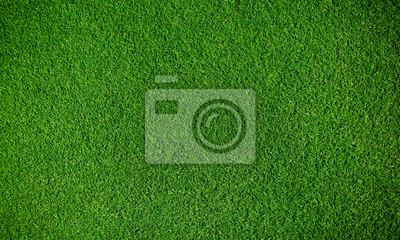 Poster Artificial grass background