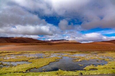 Atacama desert savanna, mountains and volcano landscape, Chile, South America