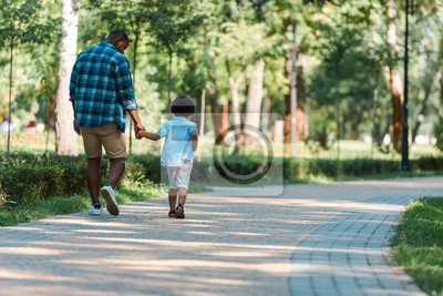 Poster back view of curly kid holding hands with african american father and walking in park