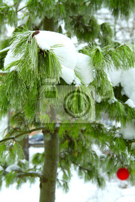 Ball auf schneebedeckten Baum