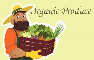 Poster Bärtigen Bauern oder Gärtner in einem Hut hält eine Holzkiste mit frischem Gemüse und Obst gefüllt, kopieren Sie Platz auf der rechten Seite, EPS 8 Vektor-Illustration, keine Transparentfolien
