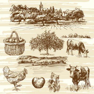 Poster Bauernhof, Ernte, ländliche Landschaft - Hand gezeichnet