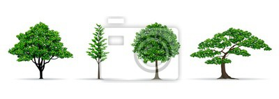 Poster Baum gesetzt realistische Vektor-Illustration
