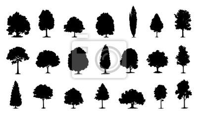 Poster Baum Silhouetten