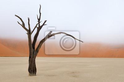 Baum Skelett Deadvlei, Namibia