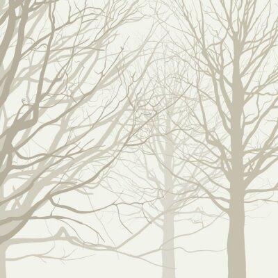 Poster Bäume Hintergrund